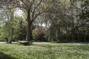 3_immoaugusta_casa_en_venta_valldoreix_sant_cugat_del_valles_barcelona_immoaugusta