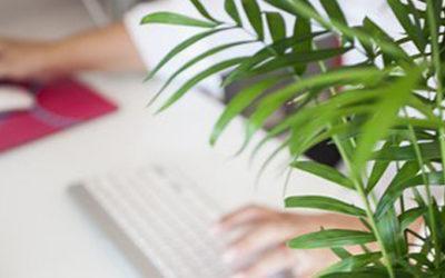 Los 8 consejos para crear un espacio de teletrabajo eficaz, saludable y productivo